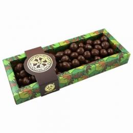Chocolate Tree  Hazelnuts Dark Chocolate